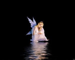night-angel-643730